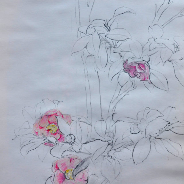 日本刺繍の写生